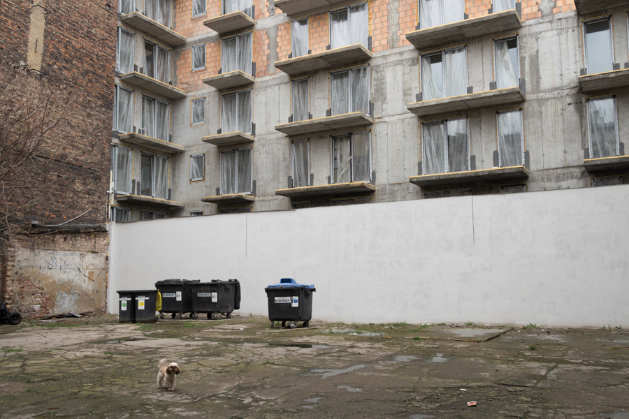 Interstices with dog Digital photography, Poznan, April 2016.